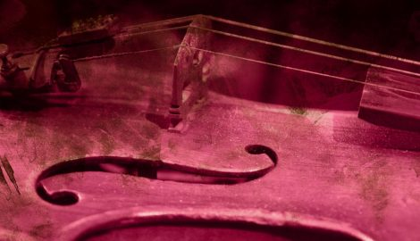 violin-purple