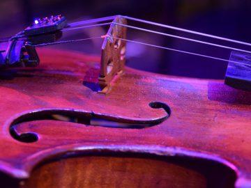 violin-2018-la-mirada