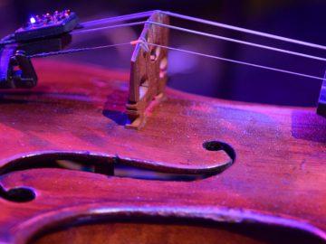 violin-november-2018